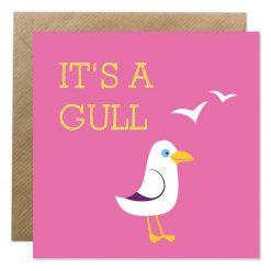 It's a gull