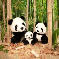 panda-cw